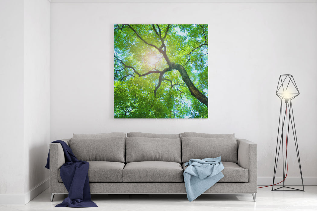 Beams Of The Sun Canvas Wall Art Print