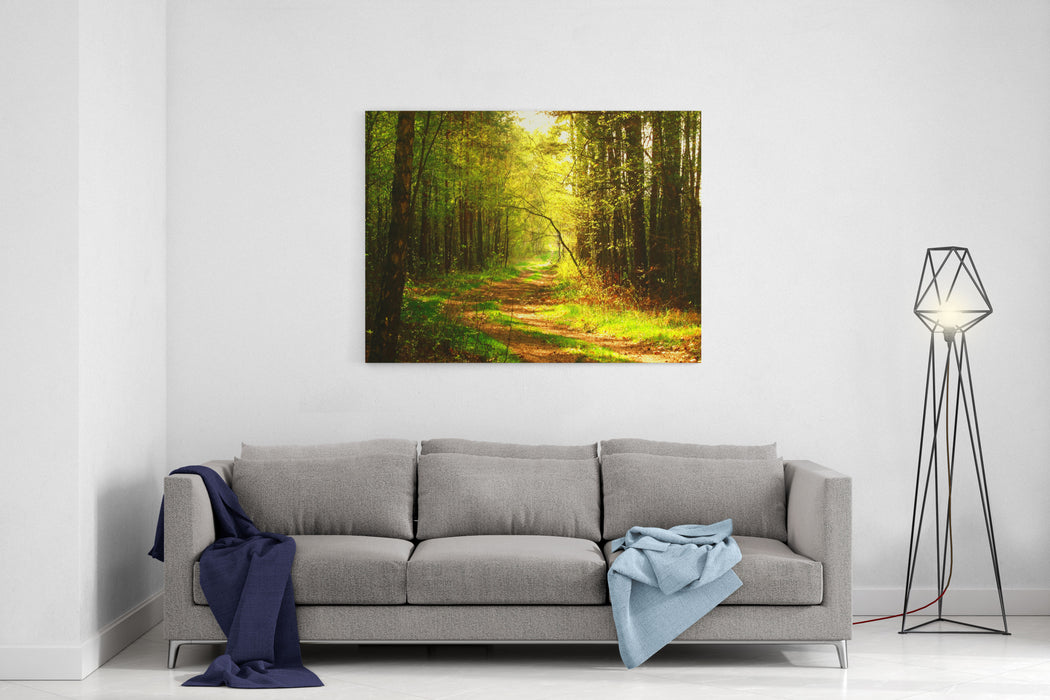 Landscape Shot With The Gold Sun Rays Illumining A Scenic Road In A Beautiful Green Forest, With Light Effects And Shadows, Soft Focus Canvas Wall Art Print