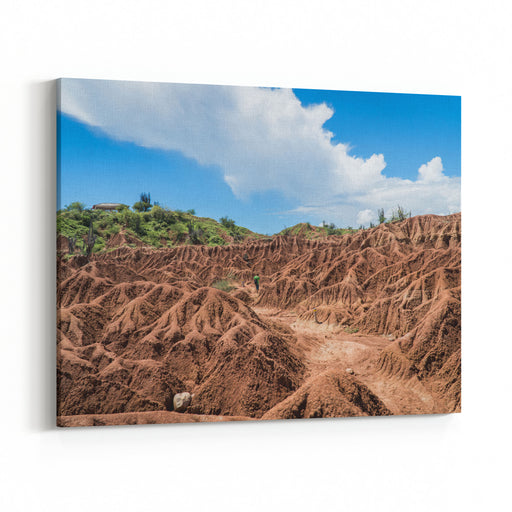 Landscape Photo Of The Colombian Tatacoa Desert Boy Is Walking In The Distance With Beautiful And Memorizing Mud Textures And Structures Canvas Wall Art Print