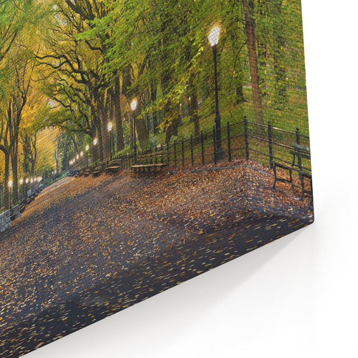 Central Park Image Of  The Mall Area In Central Park, New York City, USA At Autumn Canvas Wall Art Print