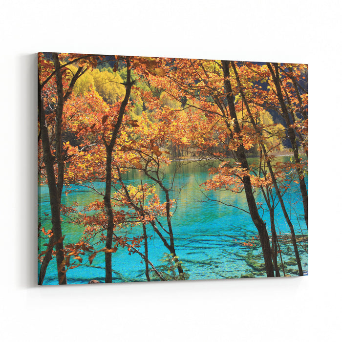 Jiuzhaigou Valley Scenic And Historic Interest Area, Sichuan, China Canvas Wall Art Print