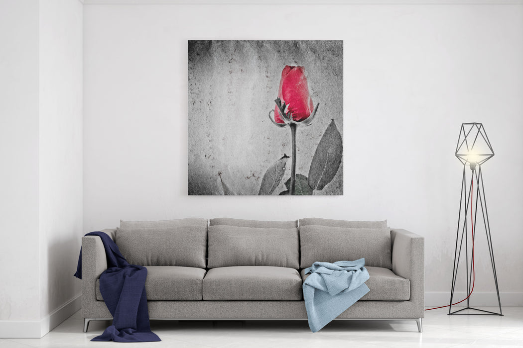 Red Rose Flower On Black And White Paper Texture Canvas Wall Art Print