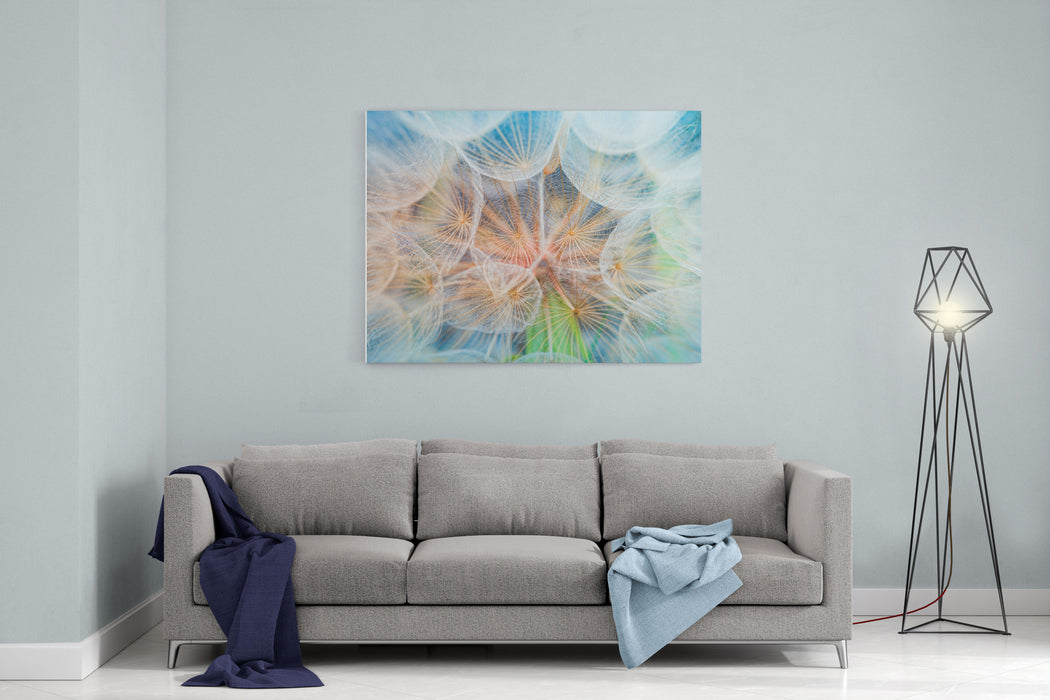 Dandelion Inside,macro Photography Canvas Wall Art Print
