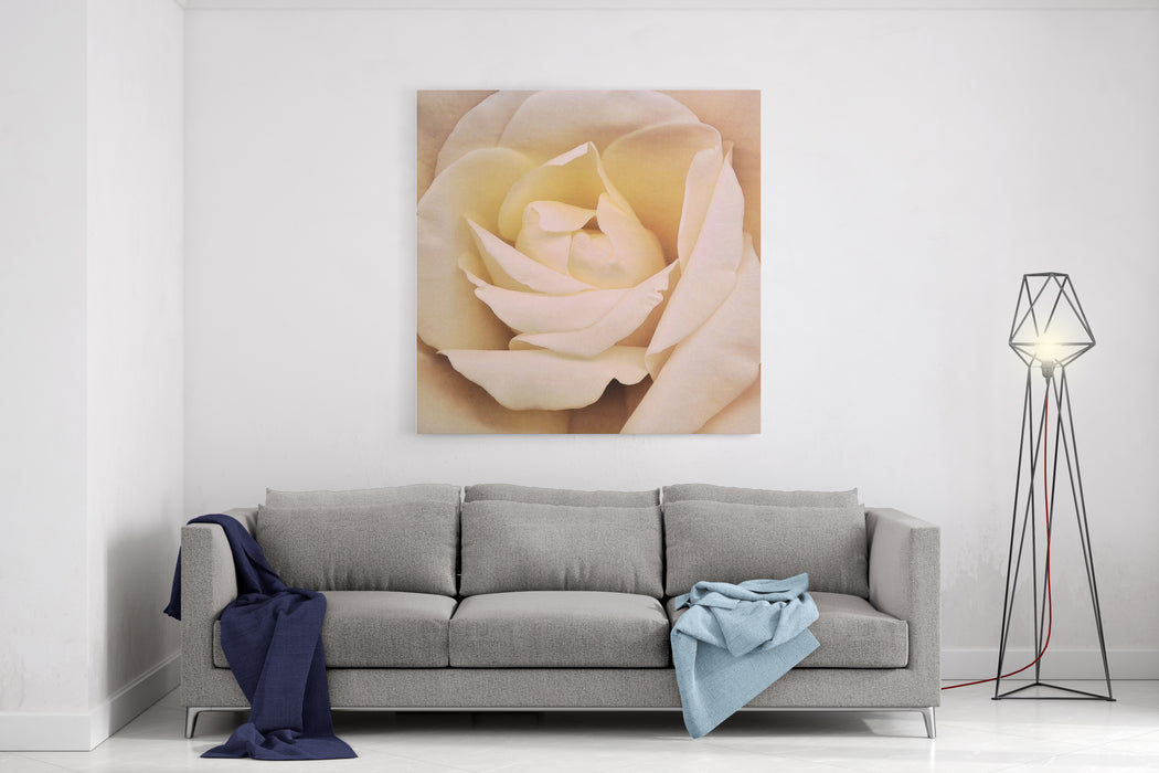 White Orchid Flower Painting Canvas Wall Art Print