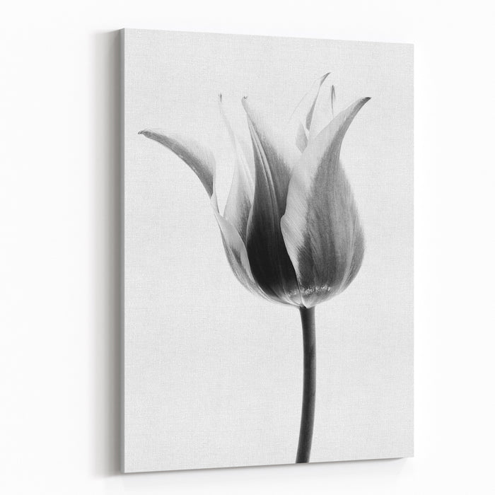Abstract Flower Background Tulips Canvas Wall Art Print