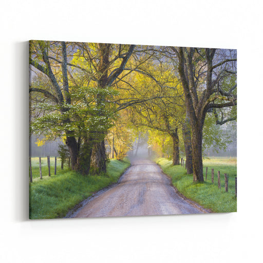 Cades Cove Great Smoky Mountains National Park Scenic Landscape Spring Scenic Landscape Photography On Sparks Lane Canvas Wall Art Print