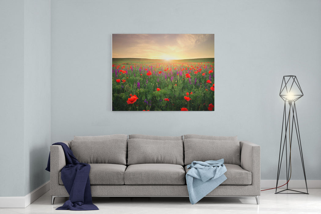 Field With Grass, Violet Flowers And Red Poppies Against The Sunset Sky Canvas Wall Art Print