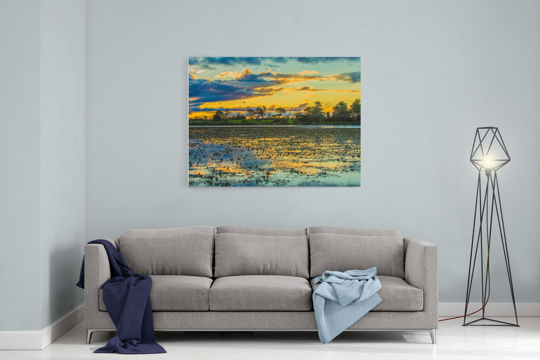 Colorful Sunset In Pantanal, Brazil Canvas Wall Art Print
