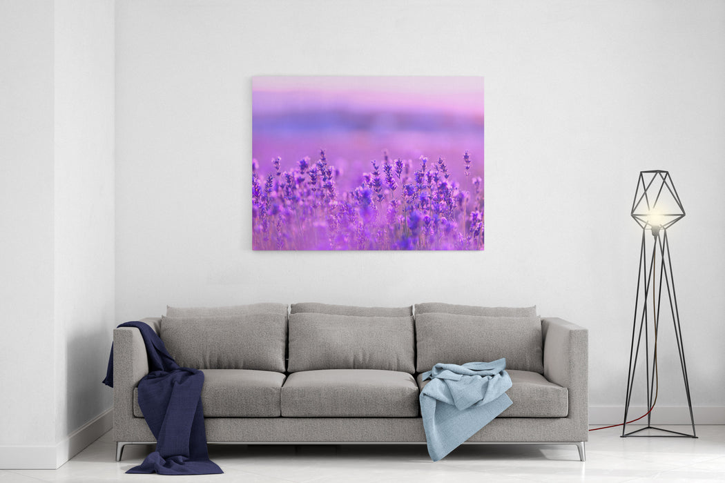 Lavender Flowers Canvas Wall Art Print