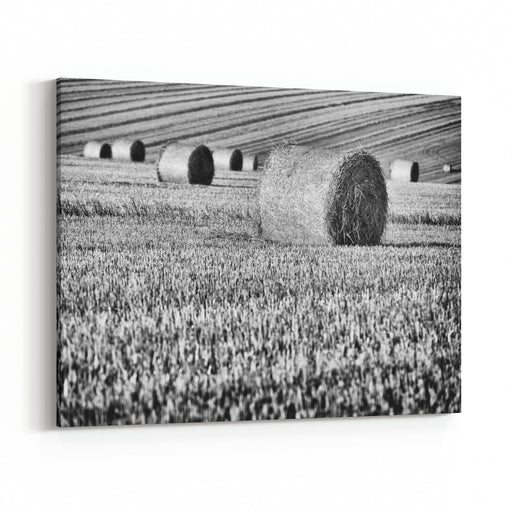 Scenic View Of The Summer Landscape, Czech Republic Canvas Wall Art Print