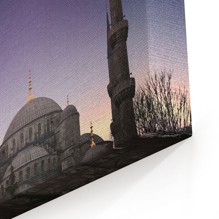Blue Mosque  Istanbul  Turkey Canvas Wall Art Print