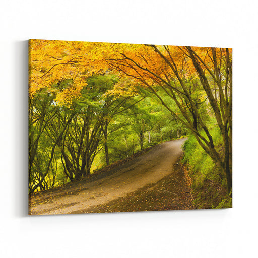 A Beautiful Peaceful Autumn Scene Canvas Wall Art Print