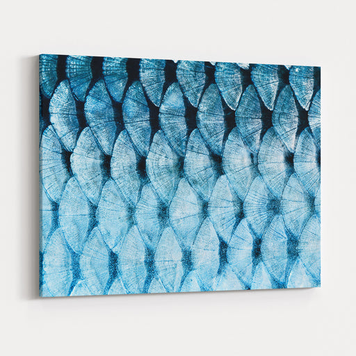 The Fish Scale Close Up Canvas Wall Art Print