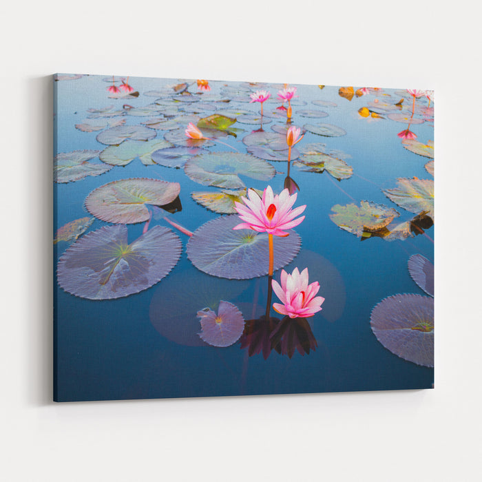 Beautiful Lotus Flower Outdoor Canvas Wall Art Print