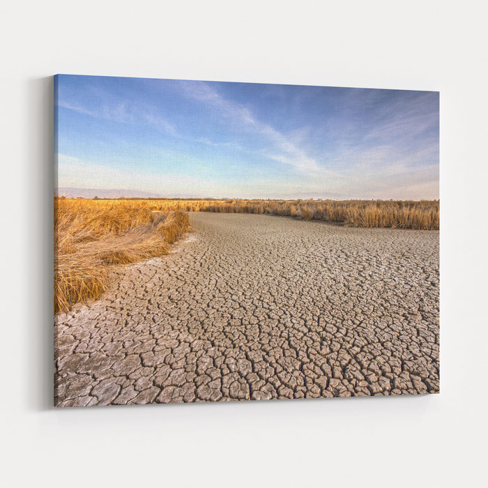 Cracked Dry Ground Near Fremont, California, USA Canvas Wall Art Print