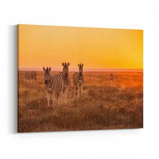 A Herd Of Zebra Grazing At Sunrise In Etosha, Namibia Canvas Wall Art Print