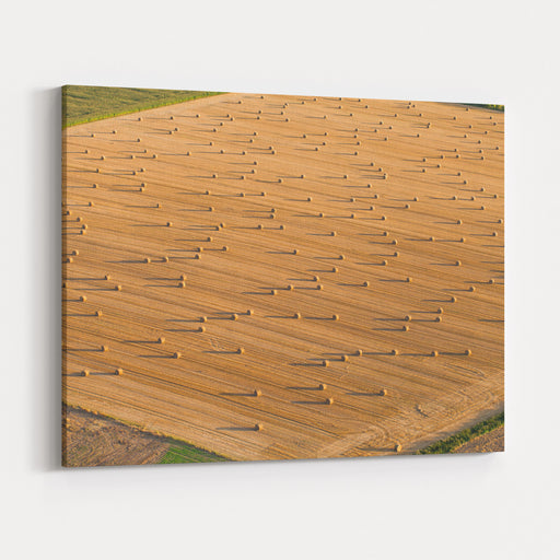 Aerial View Of  Harvest Field Canvas Wall Art Print