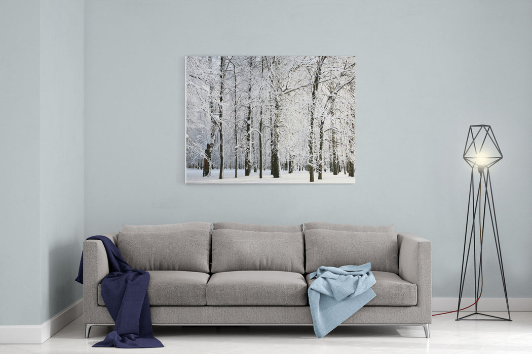Winter Trees Canvas Wall Art Print