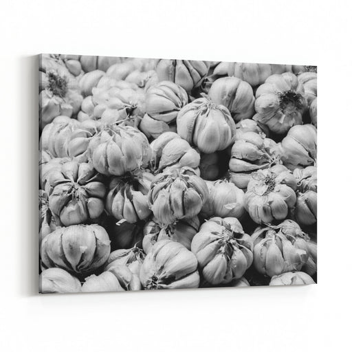 Black And White Garlic Canvas Wall Art Print