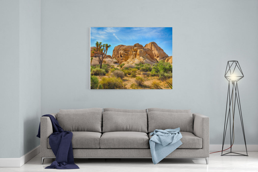 Boulders And Joshua Trees In Joshua Tree National Park, California Canvas Wall Art Print