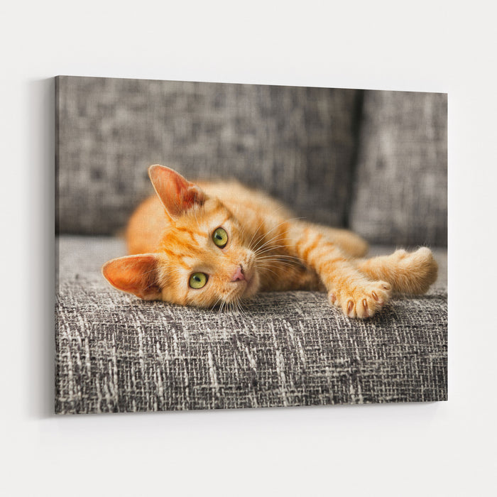 Red Kitten Lying On Bed And Looking At Camera Canvas Wall Art Print