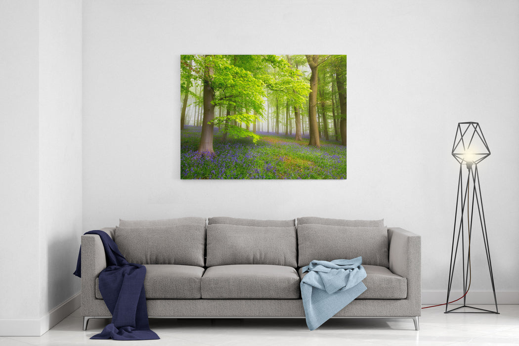 A Carpet Of Bluebells In The Misty Woods UK Canvas Wall Art Print