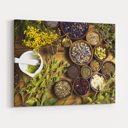 Natural Medicine, Herbs Canvas Wall Art Print
