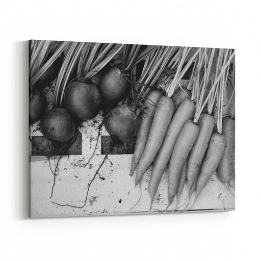 Carrots And Beetroot In Black And White Canvas Wall Art Print