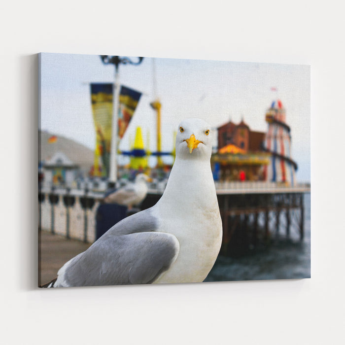 A Seagull At Brighton, UK Shallow Depth Of Field Focus On The Eyes Canvas Wall Art Print