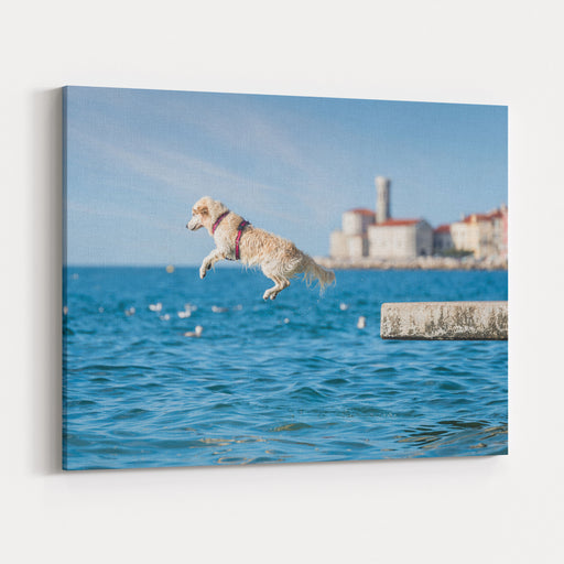 Golden Retriever Dog Jumping Into Sea Canvas Wall Art Print