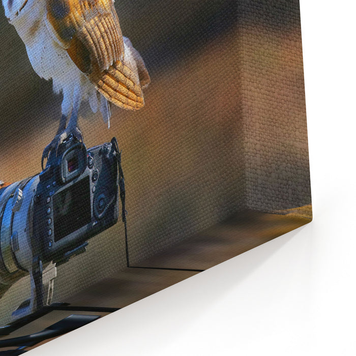 Barn Owl Tyto Alba Sitting On A Camera Canvas Wall Art Print
