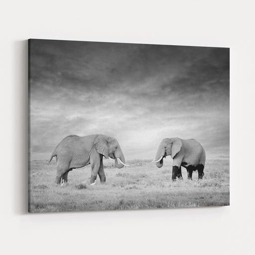Two Elephant In The Wild  National Park Kenya Canvas Wall Art Print