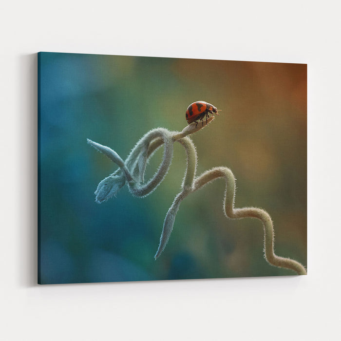 Ladybug On Rolled Plant With Colorful Background Canvas Wall Art Print