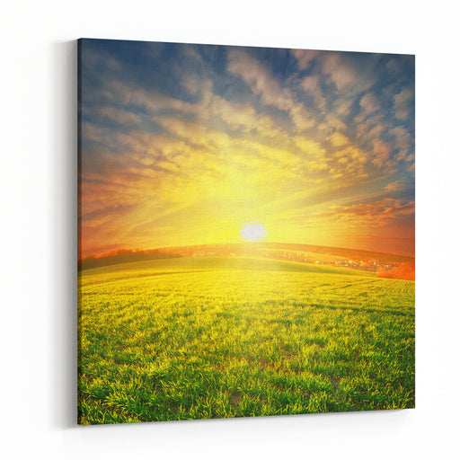 Meadow With Green Grass Under Sunset Dramatic Sky Canvas Wall Art Print