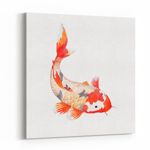 Watercolor Rainbow Carp Hand Drawn Natural Fish Isolated On White Background Vector Oriental Wildlife Illustration Single Object Canvas Wall Art Print