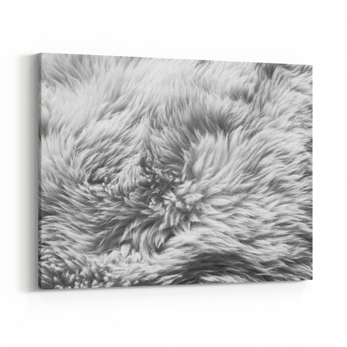 Luxurious Wool Texture From A White Sheepskin Rug In Black And White ...