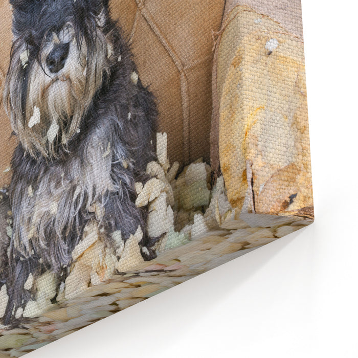 Naughty Bad Schnauzer Puppy Dog Sitting On A Couch That She Has Just Destroyed Canvas Wall Art Print