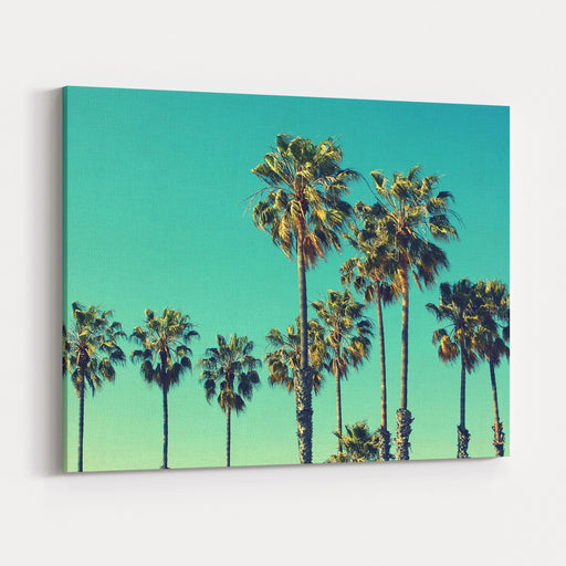 Palm Trees At Santa Monica Beach Vintage Post Processed Fashion, Travel, Summer, Vacation And Tropical Beach Concept Canvas Wall Art Print