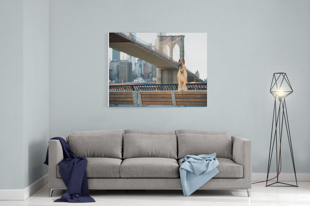 Dog Standing In Front Of Brooklyn Bridge And NYC Skyline Horizontal Canvas Wall Art Print