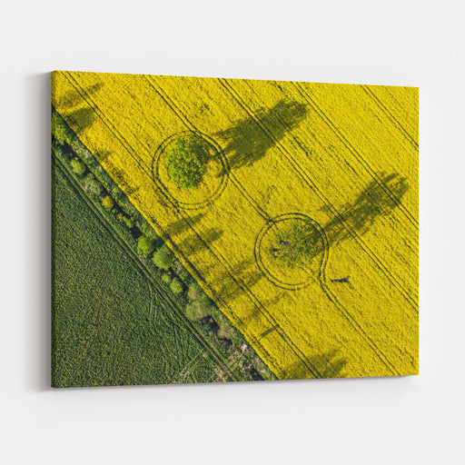 Aerial View Of Harvest Fields In Poland Canvas Wall Art Print
