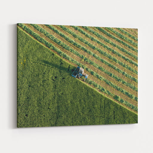 Aerial View Of Harvest Fields With Combine In Poland Canvas Wall Art Print