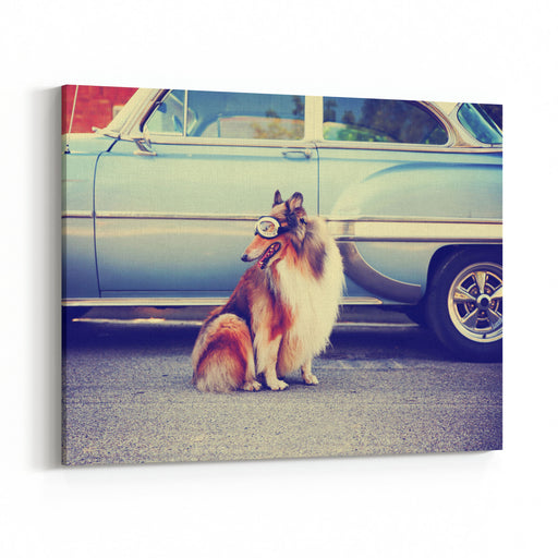 A Collie Posing For The Camera In Front Of A Classic Car During A Hot Summer Day With Goggles On Of A Classic Car Toned With A Retro Vintage Instagram Filter Action Effect App Canvas Wall Art Print