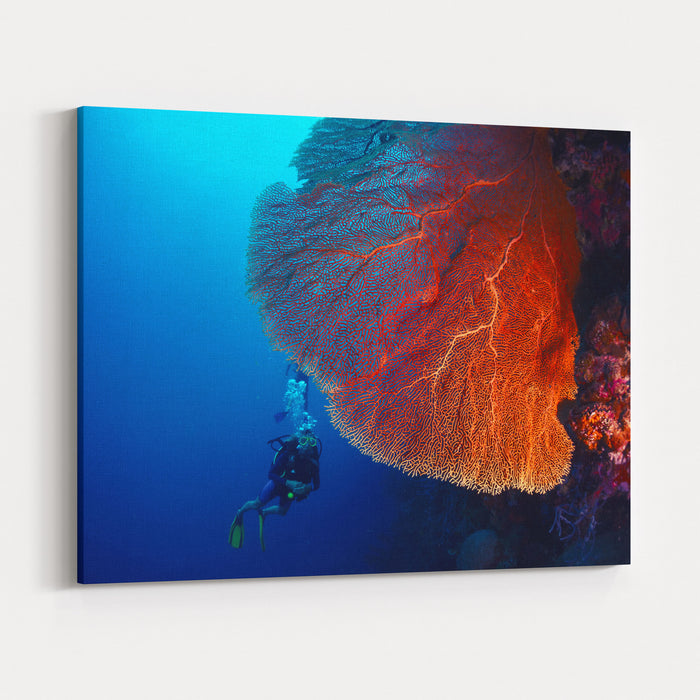 Lady Diver Exploring Tropical Bright Reef With Big Hard Coral On Foreground Canvas Wall Art Print