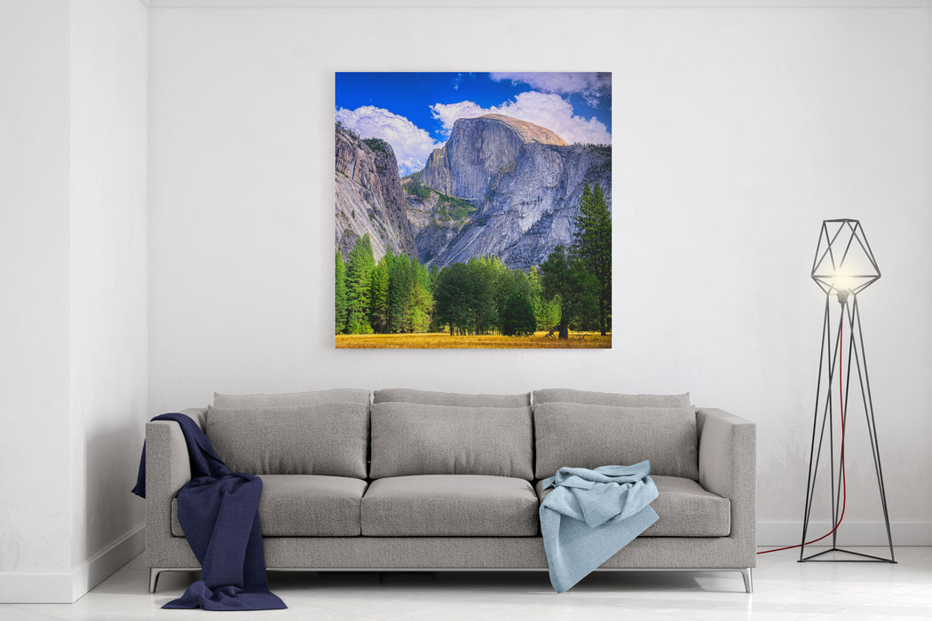 Yosemite National Park, California  Half Dome Peak Canvas Wall Art Print