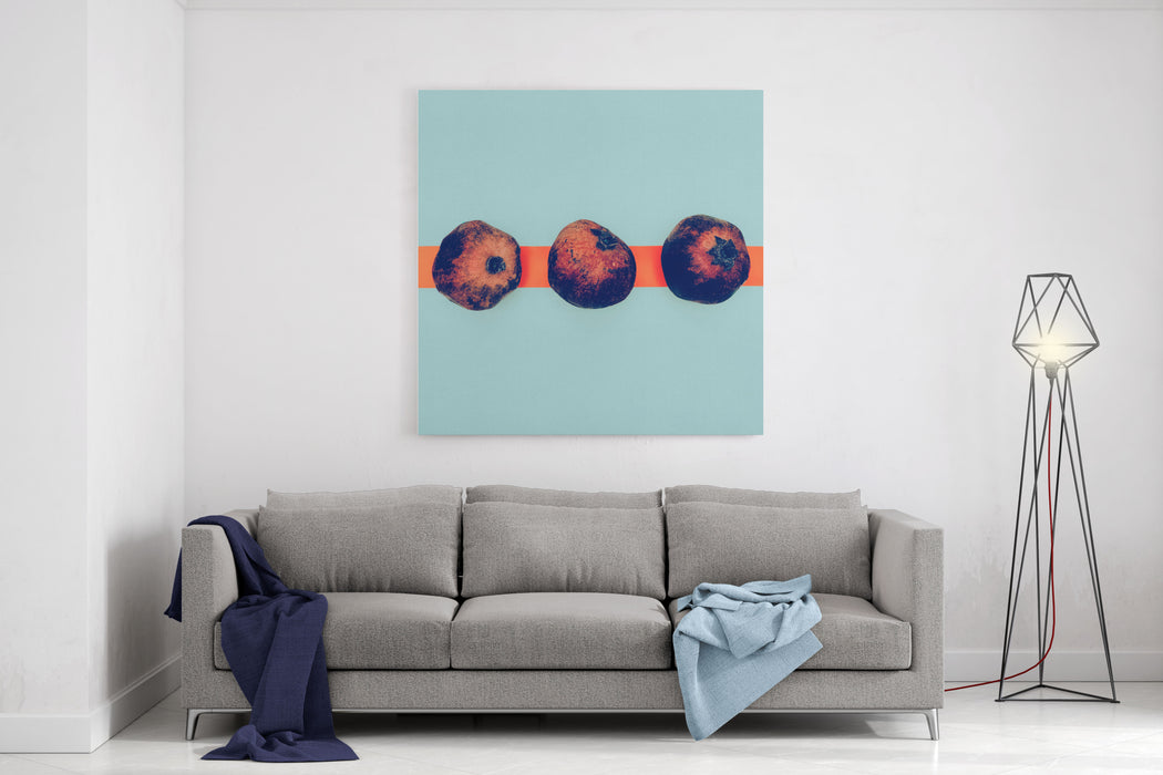 Pomegranates In The Exclusive Design Minimal Style Canvas Wall Art Print