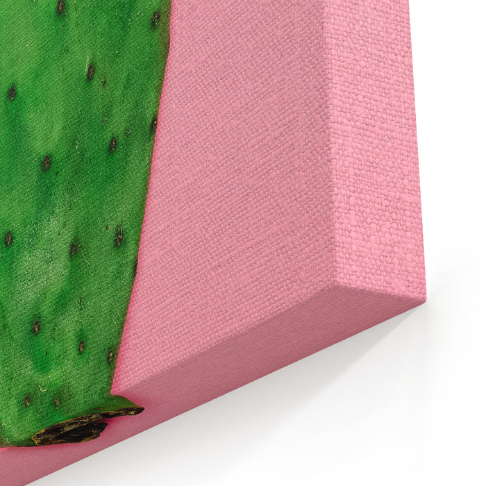 Cactus On Pink Background Minimal Design Photo Canvas Wall Art Print