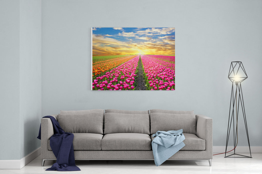 A Magical Landscape With Sunrise Over Tulip Field In The Netherlands Canvas Wall Art Print