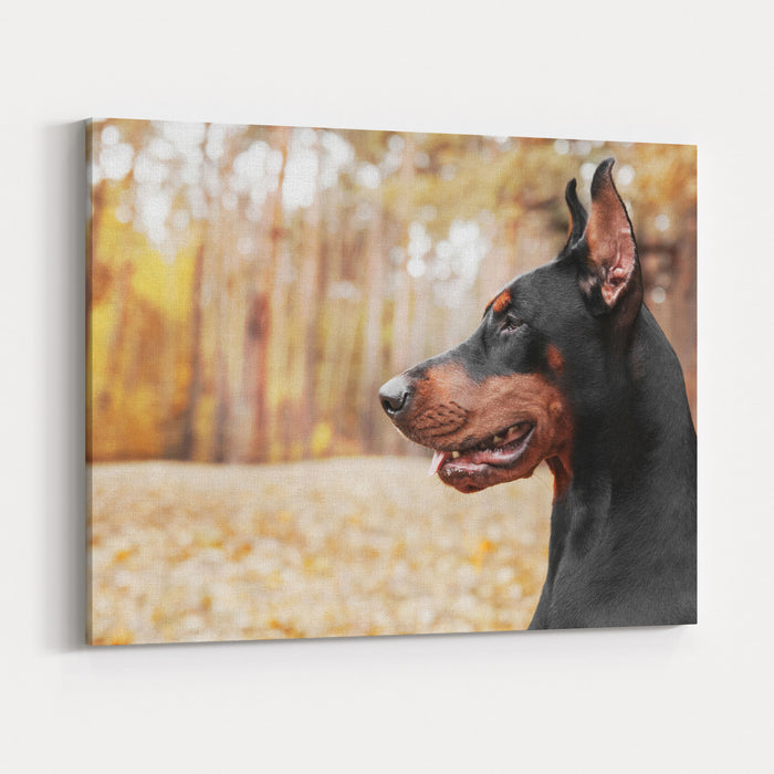Doberman Pinscher On The Background Of Autumn Trees Canvas Wall Art Print