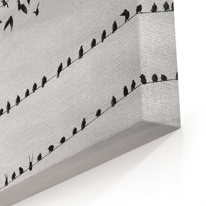 A Flock Of Birds Takes Off From The Wires Black And White Photography Canvas Wall Art Print
