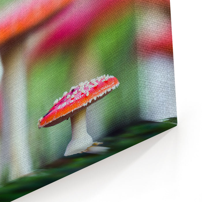 Amanita Muscaria, A Poisonous Mushroom In A Forest Canvas Wall Art Print